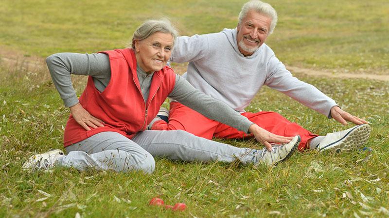 Egészséges öregedés MSM-el